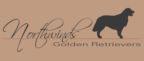 Northwinds Golden Retrievers